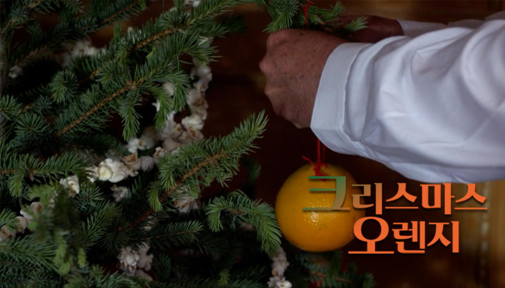 크리스마스 오렌지