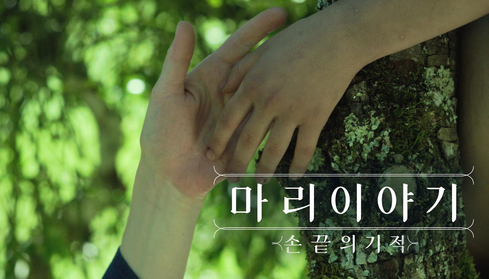 마리 이야기: 손끝의 기적